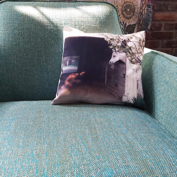 Jack Tone Ranch pillow on chair