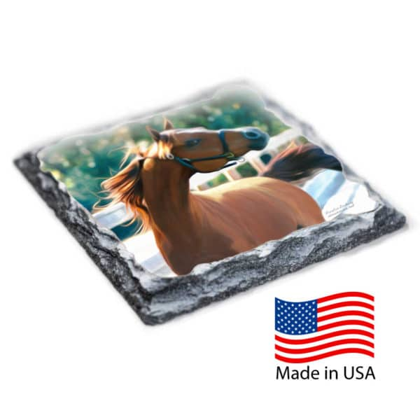 Chestnut at Liberty on 3.5 inch Stone Coasters