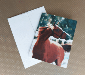 "Chestnut at Liberty 4""x5"" note cards"